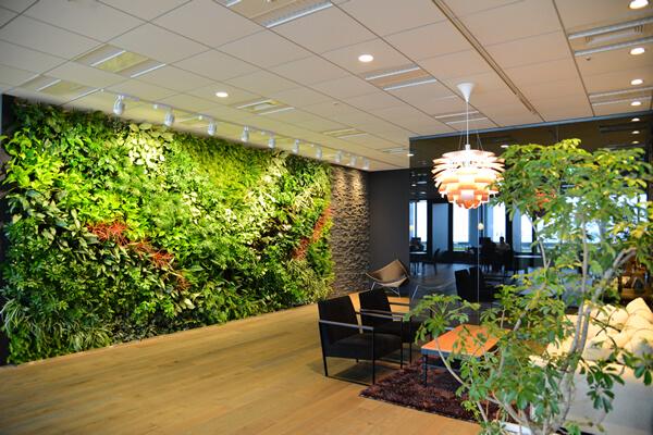 ハタラクティブの壁面緑化