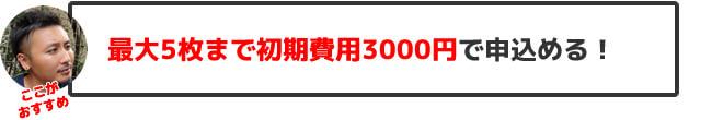 最大5枚まで初期費用3000円で申込める!
