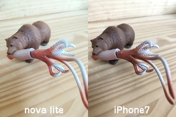 nova liteとiPhone7カメラ比較4