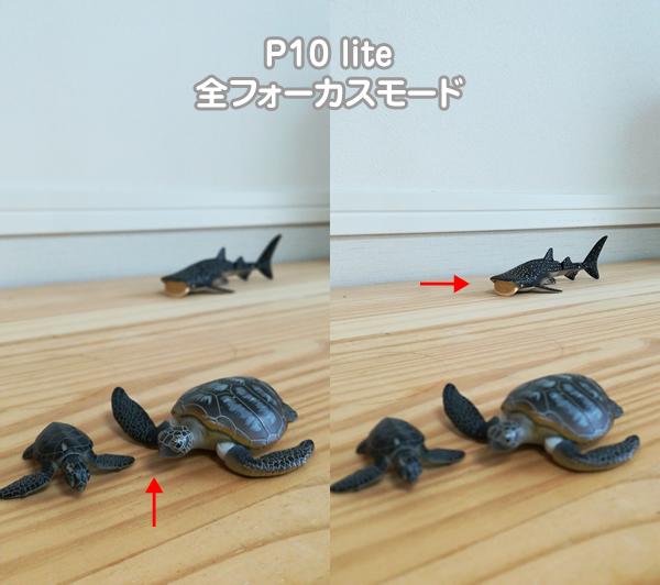P10 lite 全フォーカスモード