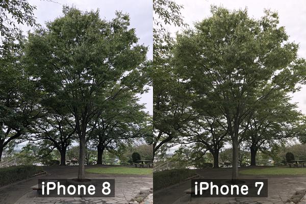 iPhone8とiPhone7の写真比較(木)