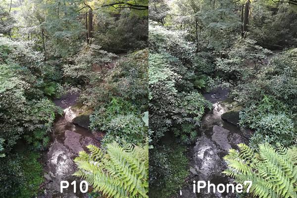 P10とiPhone7カメラ比較1