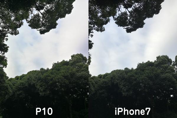P10とiPhone7カメラ比較7