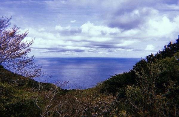 伊豆大島一周コースからみられる海